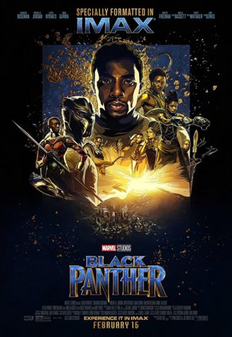 Review: Black Panther Movie